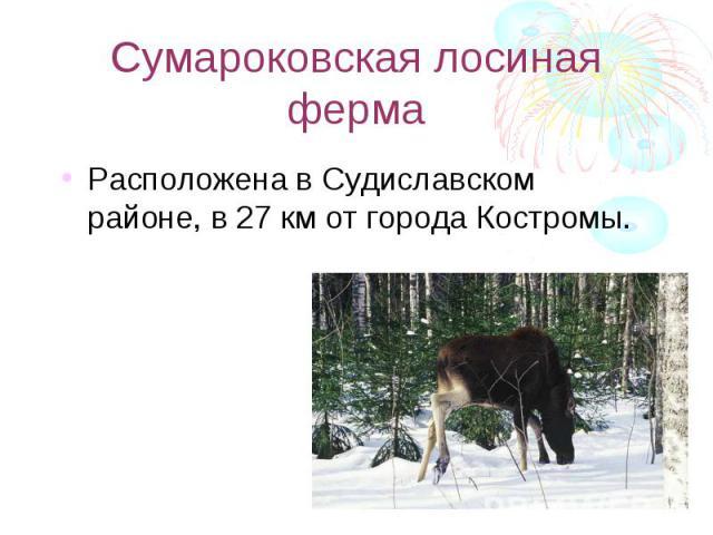 Сумароковская лосиная ферма Расположена в Судиславском районе, в 27 км от города Костромы.