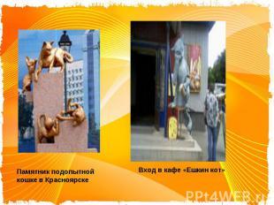 Памятник подопытной кошке в КрасноярскеВход в кафе «Ешкин кот»