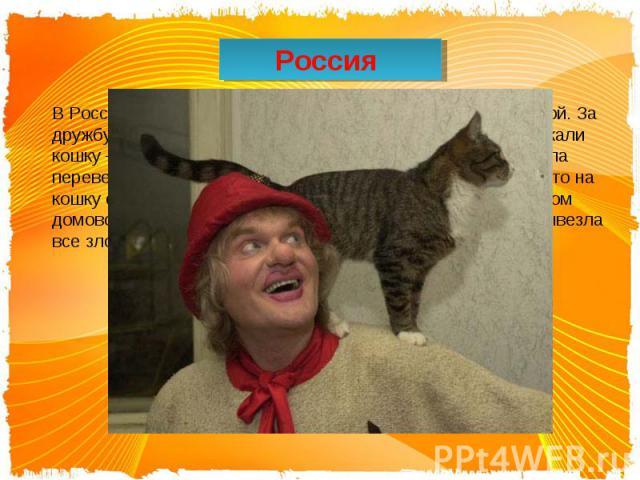 Россия В России кошка, по поверьям, тоже зналась с нечистой силой. За дружбу с домовым её уважали. В новый дом сначала запускали кошку – именно по той причине, что она на себе должна была перевезти домового из старого жилища. Также считалось, что на…