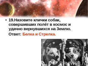 19.Назовите клички собак, совершивших полёт в космос и удачно вернувшихся на Зем
