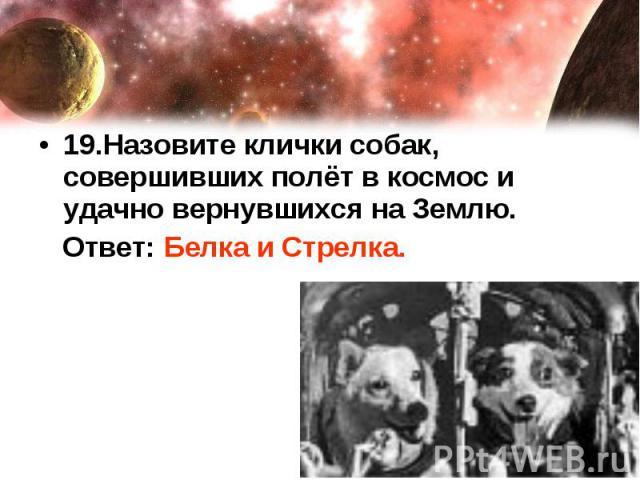 19.Назовите клички собак, совершивших полёт в космос и удачно вернувшихся на Землю. Ответ: Белка и Стрелка.