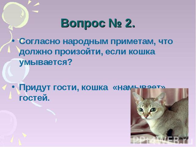 Вопрос № 2. Согласно народным приметам, что должно произойти, если кошка умывается?Придут гости, кошка «намывает» гостей.
