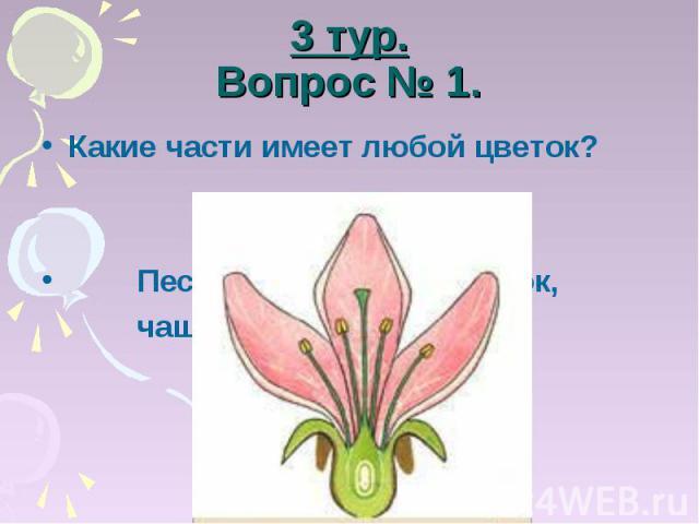 3 тур.Вопрос № 1. Какие части имеет любой цветок? Пестик, тычинка, лепесток, чашелистики, цветоложе.