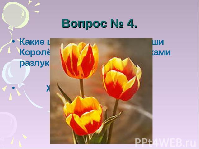 Вопрос № 4. Какие цветы, по мнению Наташи Королёвой, являются вестниками разлуки? Жёлтые тюльпаны.