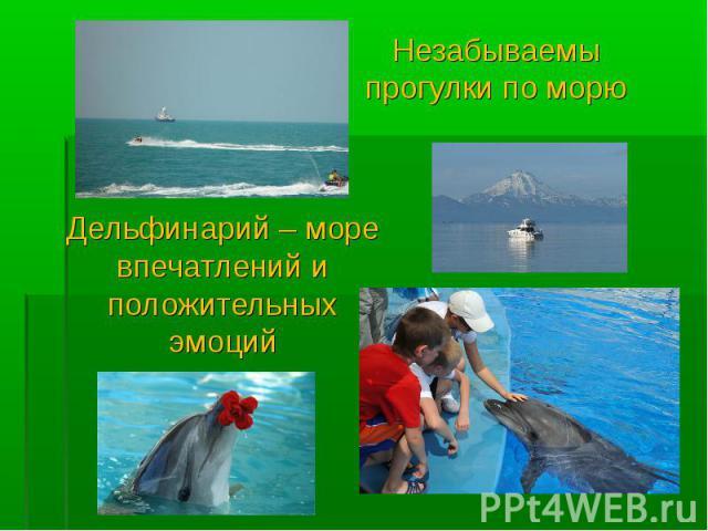 Незабываемы прогулки по морю Дельфинарий – море впечатлений и положительных эмоций