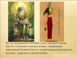 Но их подлинной богиней стала львиноголовая Бастет. Египтяне считали кошку свяще