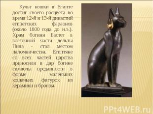 Культ кошки в Египте достиг своего расцвета во время 12-й и 13-й династий египет