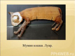 Мумия кошки. Лувр.