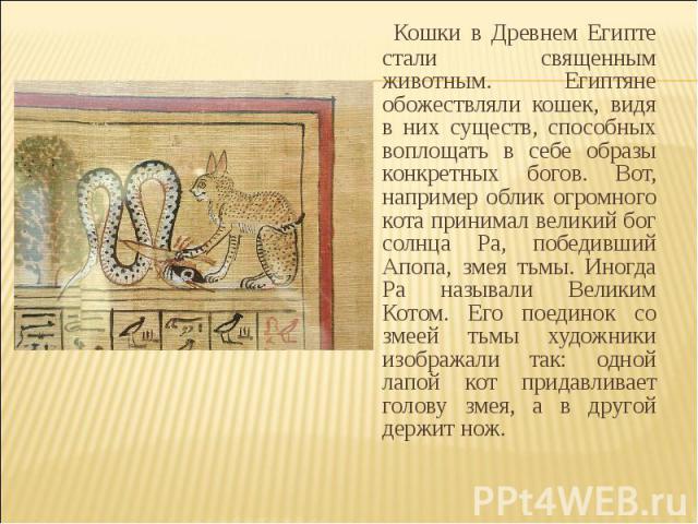 Кошки в Древнем Египте стали священным животным. Египтяне обожествляли кошек, видя в них существ, способных воплощать в себе образы конкретных богов. Вот, например облик огромного кота принимал великий бог солнца Ра, победивший Апопа, змея тьмы. Ино…