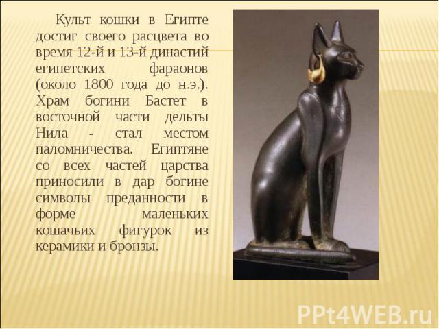 Культ кошки в Египте достиг своего расцвета во время 12-й и 13-й династий египетских фараонов (около 1800 года до н.э.). Храм богини Бастет в восточной части дельты Нила - стал местом паломничества. Египтяне со всех частей царства приносили в дар бо…