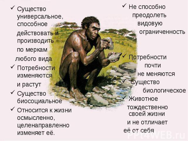 Существо универсальное, способное действовать и производить по меркам любого видаПотребности изменяются и растутСущество биосоциальноеОтносится к жизни осмысленно, целенаправленно изменяет её. Не способно преодолеть видовую ограниченностьПотребности…