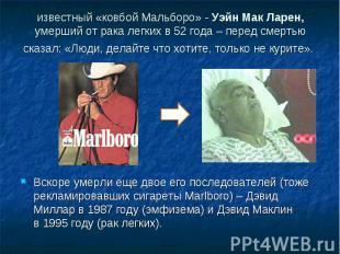 известный «ковбой Мальборо» - Уэйн Мак Ларен, умерший отрака легких в52года –