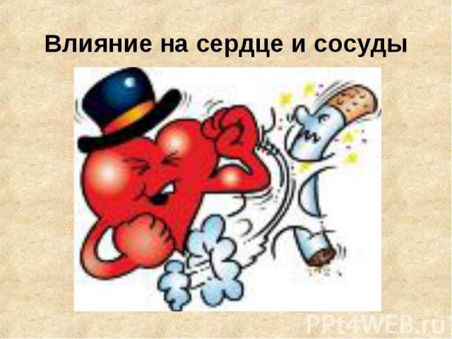 Влияние на сердце и сосуды