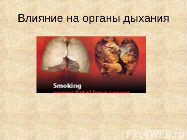 Влияние на органы дыхания