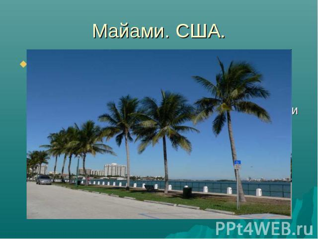 Майами. США. США. Это пожалуй Майами, где чистый, золотистый песок на берегу Атлантического океана, чистое, лазурное море, тропическое солнце (зимой здесь +20-+22, летом до +40) и дискотека до утра. Все как в кино, только это не кино, а реальность!