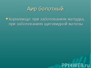 Аир болотныйКорневище: при заболеваниях желудка, при заболеваниях щитовидной жел