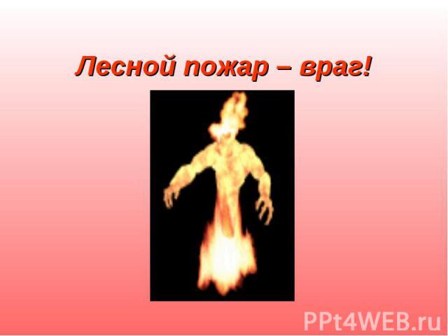 Лесной пожар – враг!