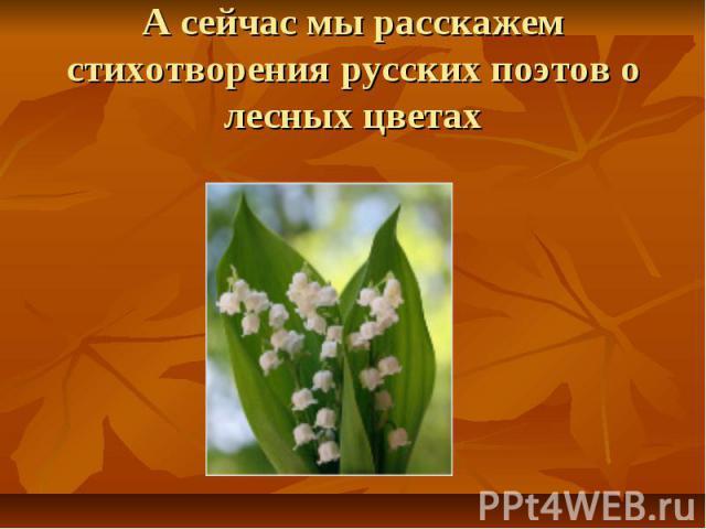А сейчас мы расскажем стихотворения русских поэтов о лесных цветах