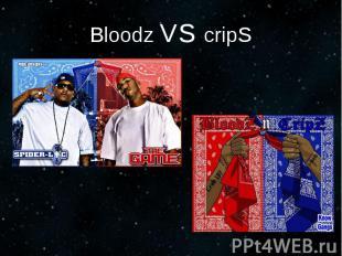 Bloodz VS cripS