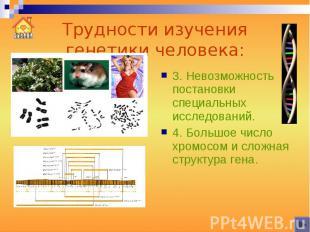 Трудности изучения генетики человека: 3. Невозможность постановки специальных ис