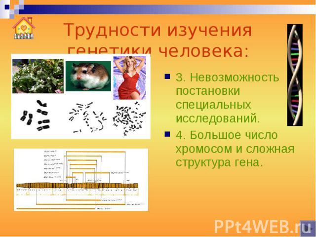 Трудности изучения генетики человека: 3. Невозможность постановки специальных исследований.4. Большое число хромосом и сложная структура гена.