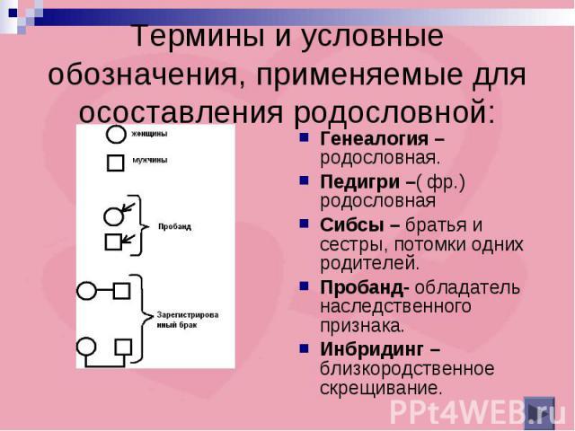Термины и условные обозначения, применяемые для осоставления родословной: Генеалогия –родословная.Педигри –( фр.) родословнаяСибсы – братья и сестры, потомки одних родителей.Пробанд- обладатель наследственного признака.Инбридинг – близкородственное …