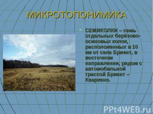 МИКРОТОПОНИМИКА СЕМИКОЛКИ – семь отдельных берёзово-осиновых колок, расположенны