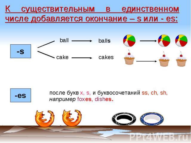 К существительным в единственном числе добавляется окончание – s или - es: после букв x, s, и буквосочетаний ss, ch, sh, например foxes, dishes.