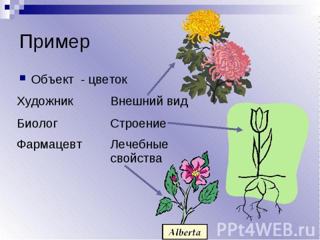 Пример Объект - цветок