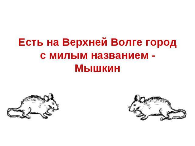 Есть на Верхней Волге город с милым названием - Мышкин