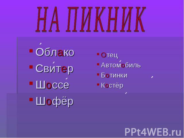 НА ПИКНИК ОблакоСвитерШоссеШофёрОтецАвтомобильБотинкиКостёр