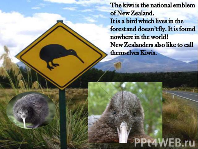 The kiwi is the national emblem of New Zealand.It is a bird which lives in the forest and doesn't fly. It is found nowhere in the world!New Zealanders also like to call themselves Kiwis.