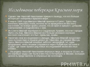 Исследование побережья Красного моря Однако там Николай Николаевич пришел к выво