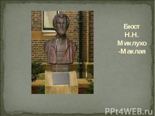 Бюст Н.Н. Миклухо-Маклая