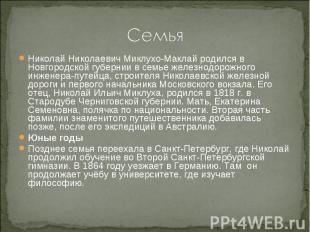 Семья Николай Николаевич Миклухо-Маклай родился в Новгородской губернии в семье