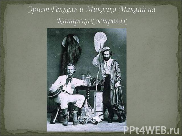 Эрнст Геккель и Миклухо-Маклай на Канарских островах