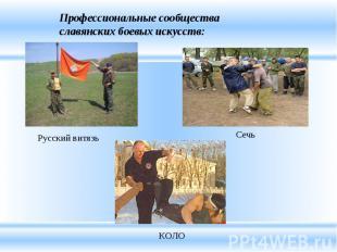 Профессиональные сообщества славянских боевых искусств:
