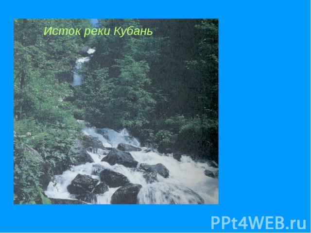 Исток реки Кубань