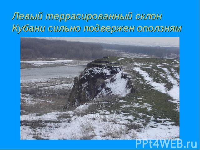 Левый террасированный склон Кубани сильно подвержен оползням
