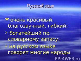 Русский язык очень красивый, благозвучный, гибкий; богатейший по словарному запа