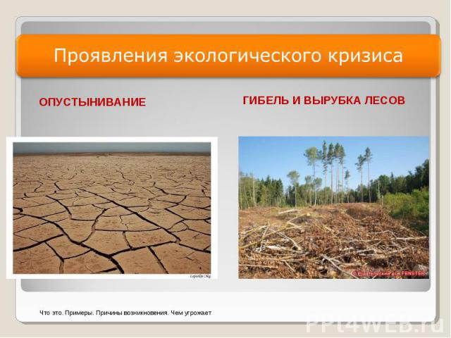 Проявления экологического кризиса ОПУСТЫНИВАНИЕ ГИБЕЛЬ И ВЫРУБКА ЛЕСОВ