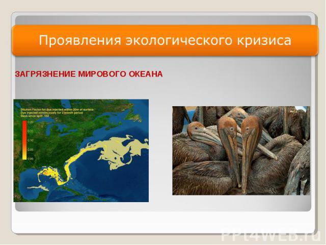 Проявления экологического кризиса ЗАГРЯЗНЕНИЕ МИРОВОГО ОКЕАНА