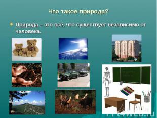 Что такое природа? Природа – это всё, что существует независимо от человека.