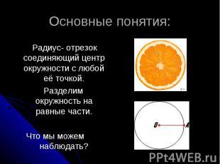 Основные понятия: Радиус- отрезок соединяющий центр окружности с любой её точкой