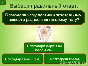 Выбери правильный ответ. Благодаря чему частицы питательных веществ разносятся п