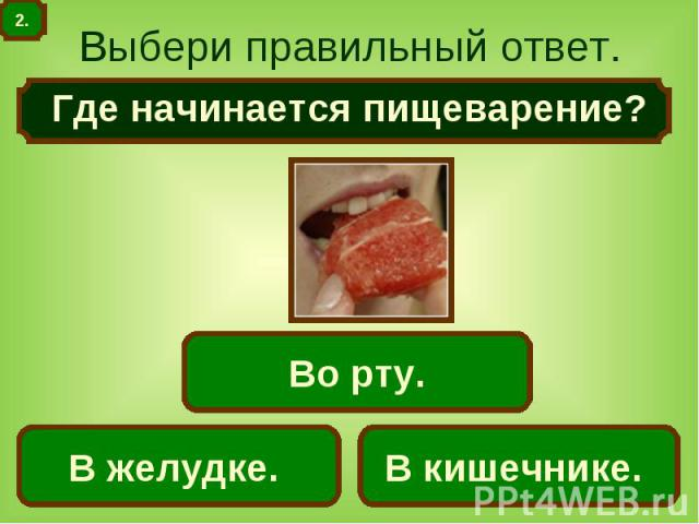 Выбери правильный ответ. Где начинается пищеварение?
