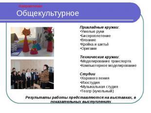 Общекультурное Прикладные кружки:Умелые рукиБисероплетениеВязаниеКройка и шитьё
