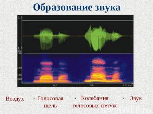 Образование звука