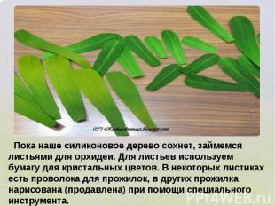 Пока наше силиконовое дерево сохнет, займемся листьями для орхидеи. Для листьев