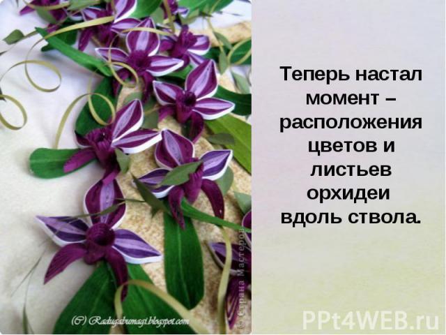Теперь настал момент – расположения цветов и листьев орхидеи вдоль ствола.